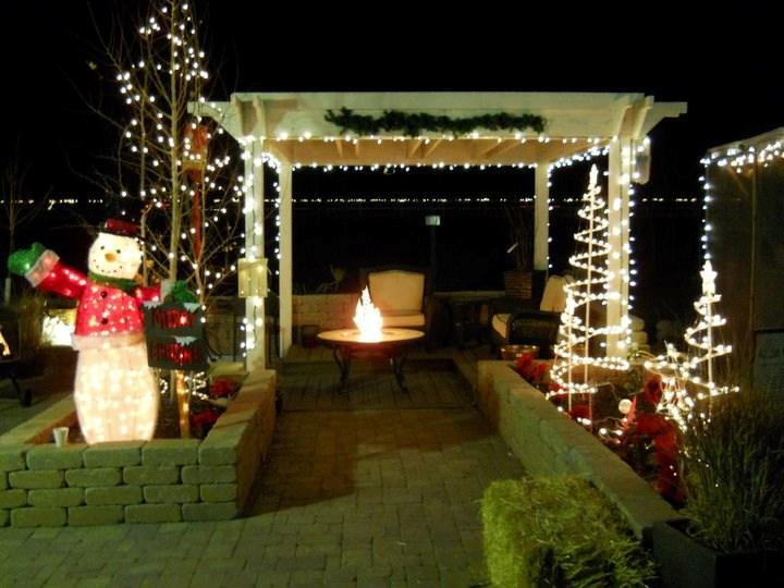 Heidrich S Colorado Tree Farm Nursery Llc Christmas Tree