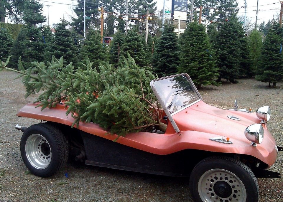 New Jersey Christmas Tree Farms