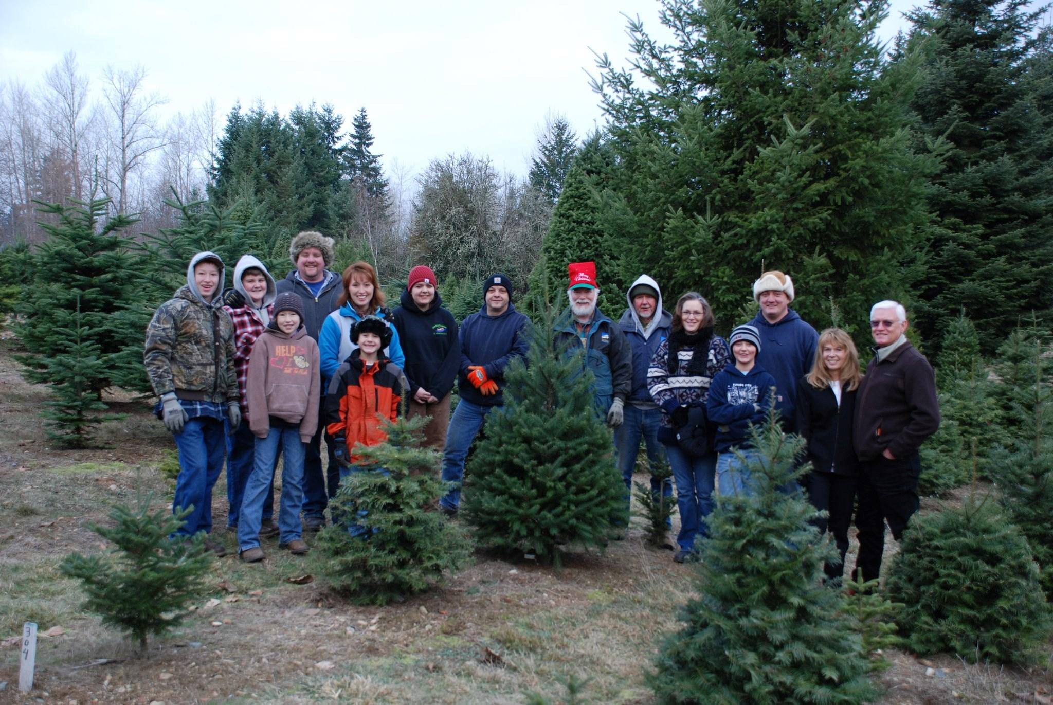 Wilson Hill Tree Farm & Nursery christmas tree farm | ChristmasTreeFarms.net