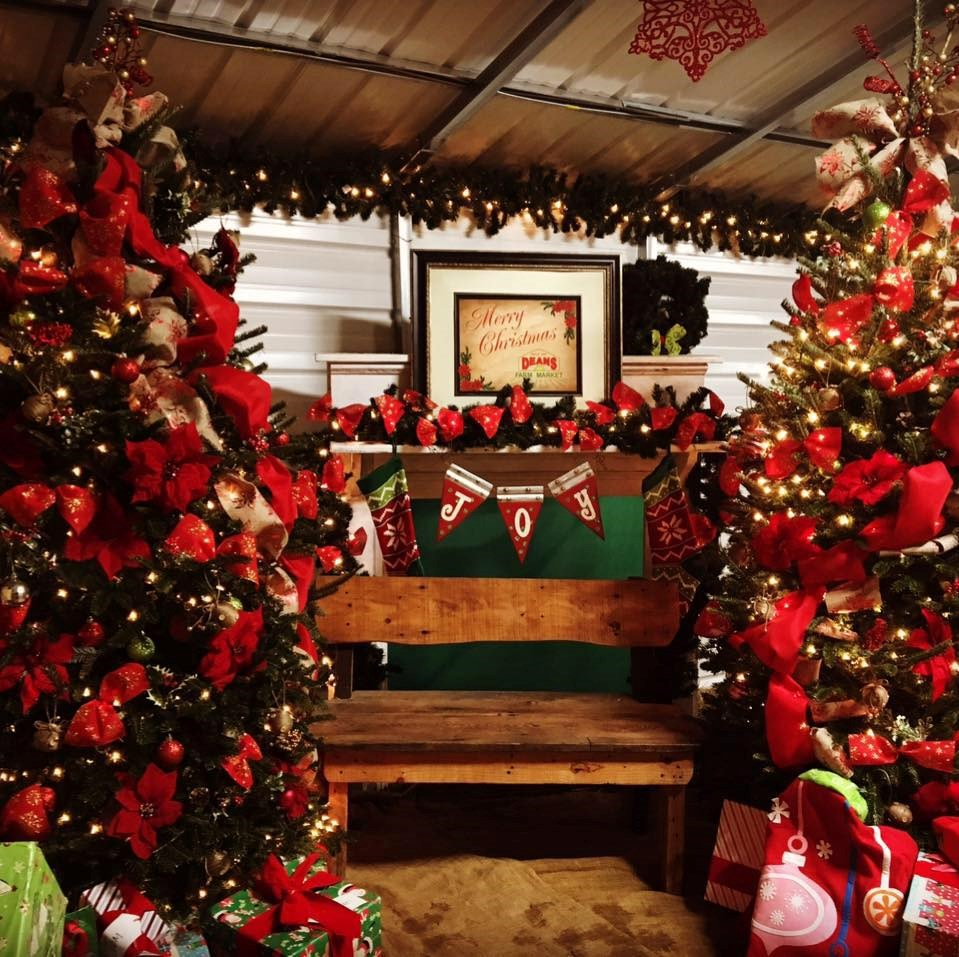 Christmas Tree Farms In North Georgia: River Ridge Christmas Tree Farms Christmas Tree Farm