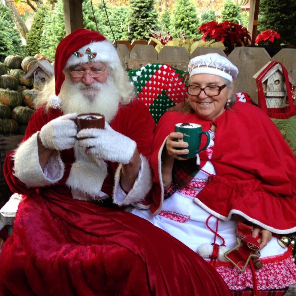 Avila Valley Barn christmas tree farm   ChristmasTreeFarms.net