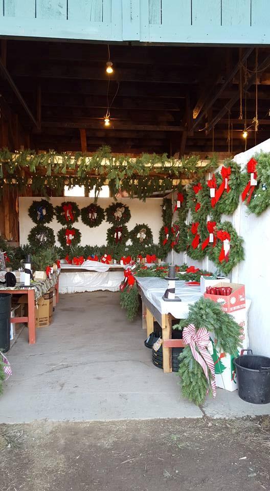 Bennies Nurseries Inc Christmas Tree Farm