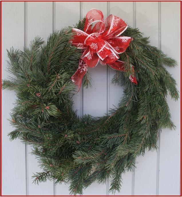 Cut Your Own Christmas Tree York Pa: Apsley Family Christmas Trees Christmas Tree Farm