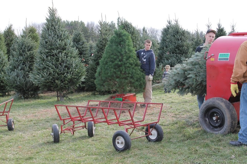 Saum Family Farm Christmas Tree Farm