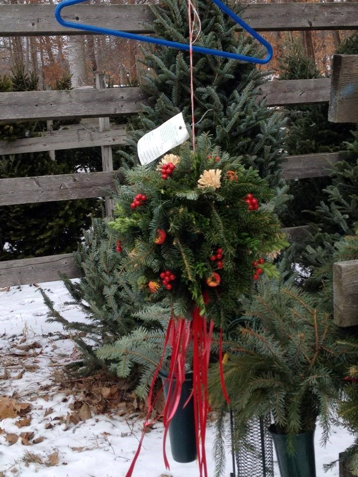 Shawnee Trail Tree Farm christmas tree farm | ChristmasTreeFarms.net