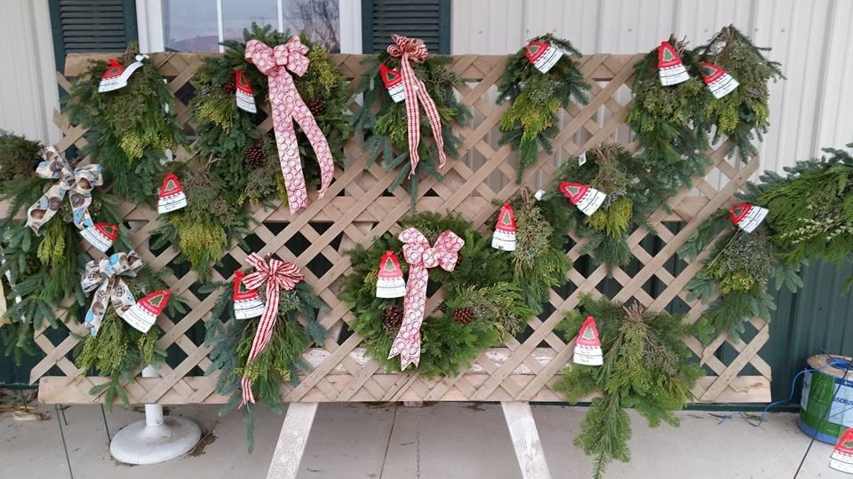 Steinberger Christmas Tree Farm Christmas Tree Farm