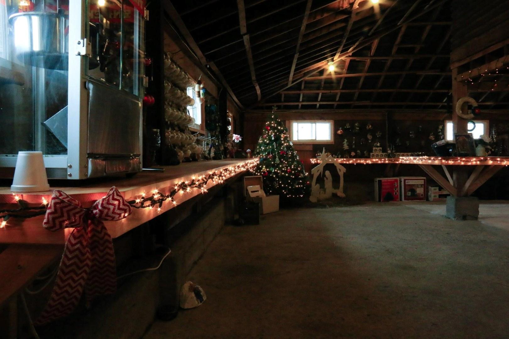 Advent Christmas Tree Farm christmas tree farm | ChristmasTreeFarms.net