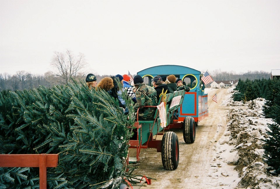 Christmas Tree Farms In Va