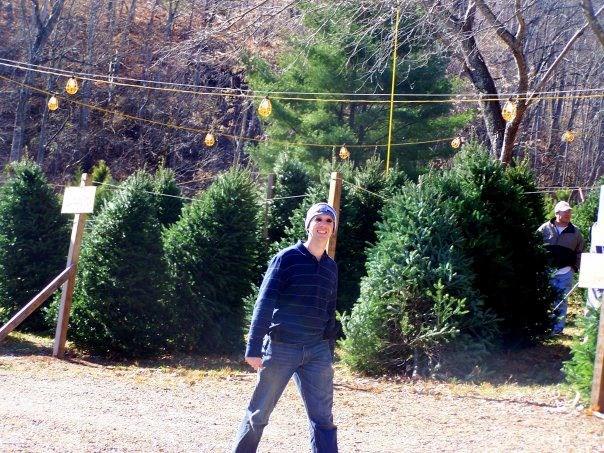 Green Needles Christmas Tree Farm Christmas Tree Farm