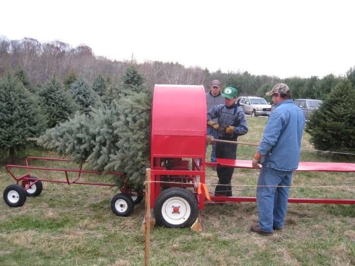 Middleburg Christmas Tree Farm christmas tree farm | ChristmasTreeFarms.net