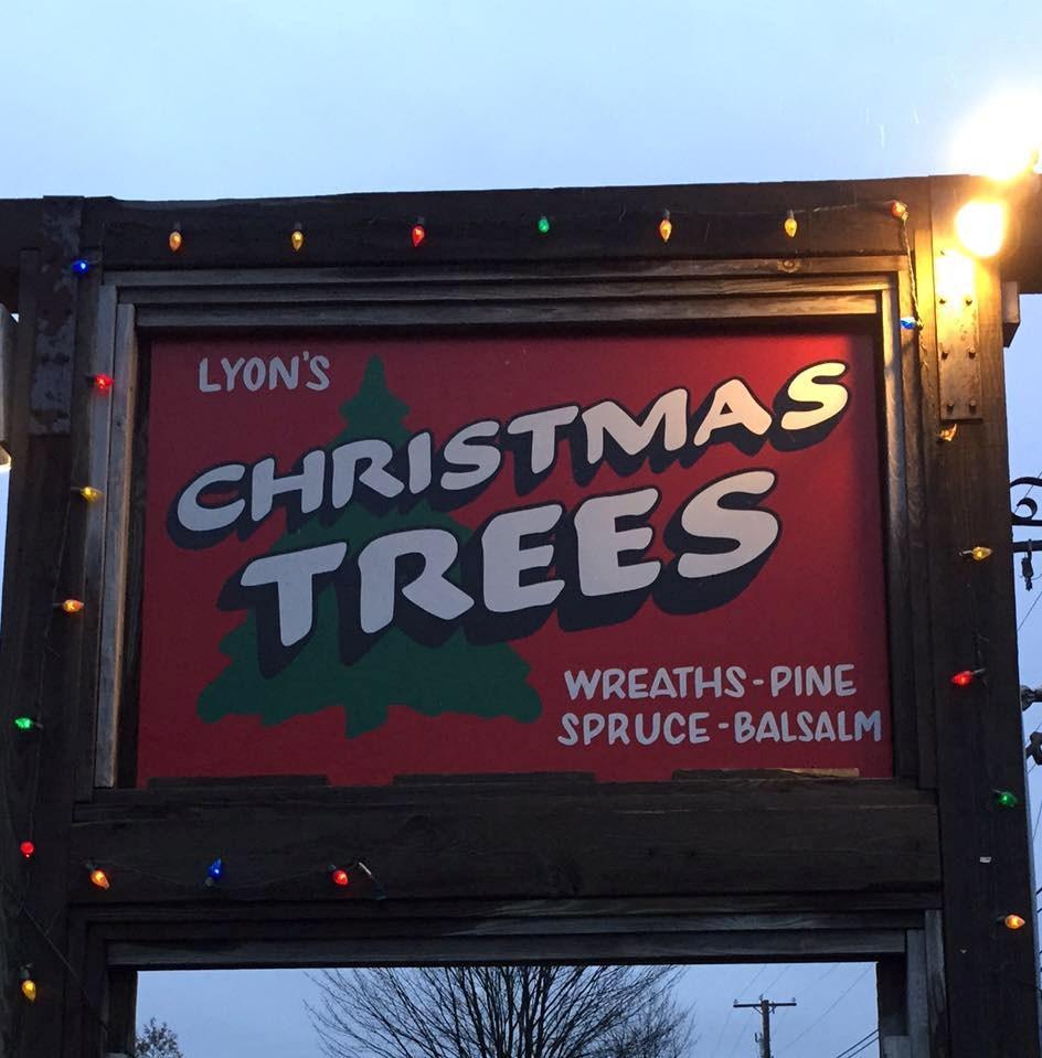 Cut Your Own Christmas Tree York Pa: Peter Lyon Christmas Tree Farm