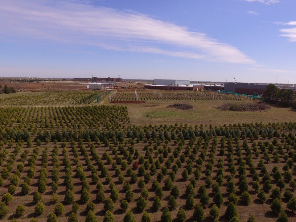 Owasso Christmas Tree Farm Christmas Tree Farm