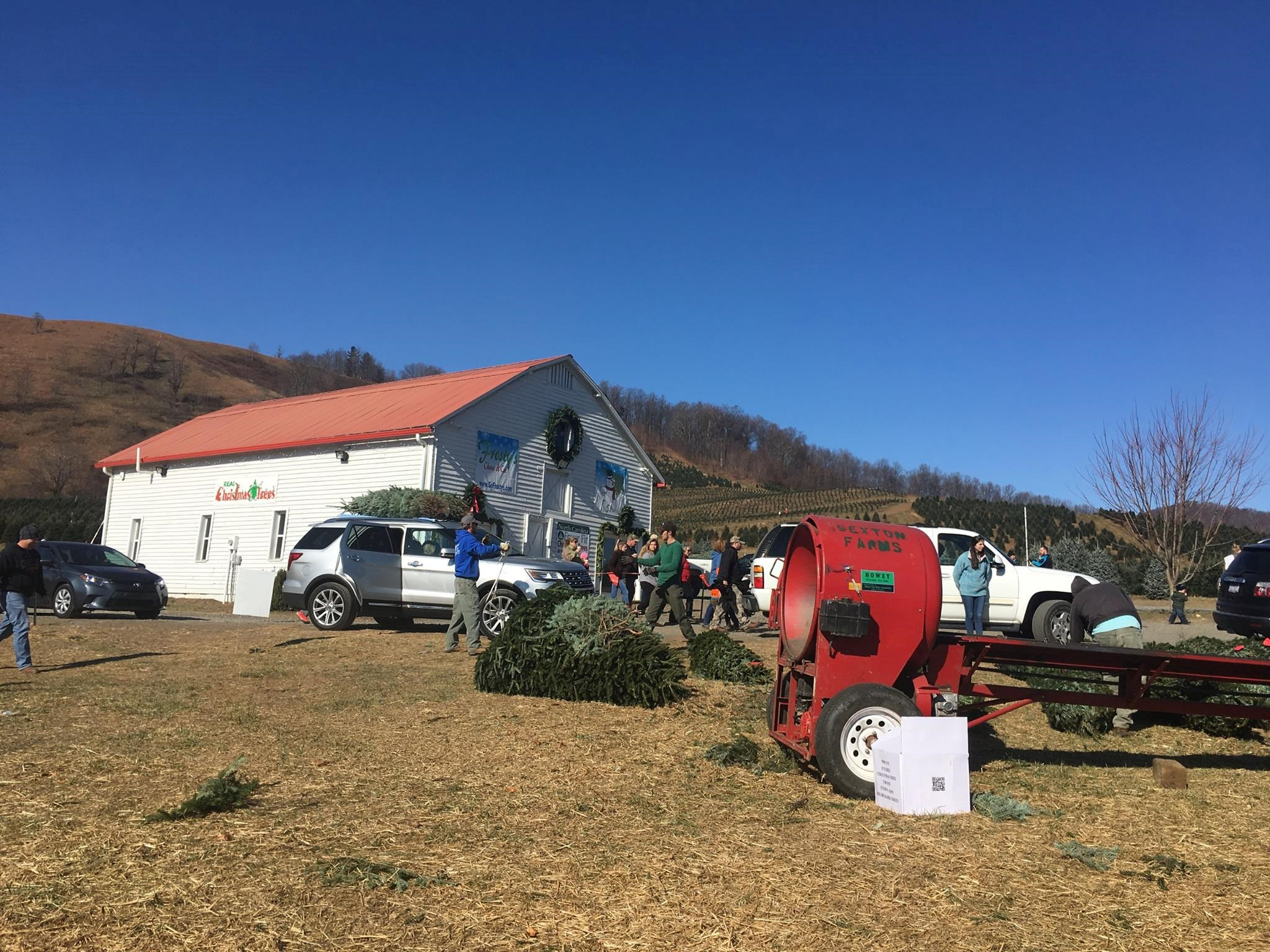 Frosty's Choose & Cut Christmas Tree Farm