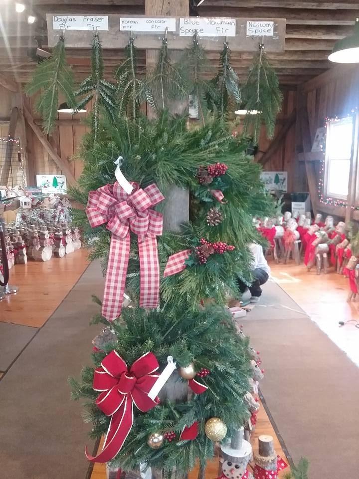 Pine Valley Farms christmas tree farm | ChristmasTreeFarms.net