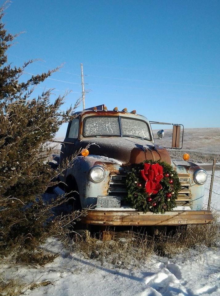 Katalari Farms christmas tree farm | ChristmasTreeFarms.net